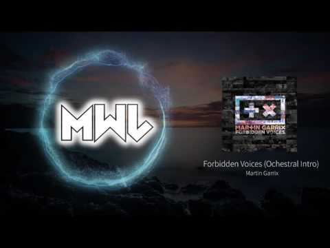 Martin Garrix - Forbidden Voices Ochestral Intro