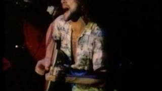 Fleetwood Mac/ Lindsey Buckingham ~  Never Going Back Again ~ Japan Live 1977