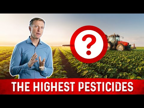 What Food Has the Most Pesticide Residue?