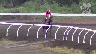 Vidéo de la course PMU PRIX CARNIVAL TICKETS ON SALE NOW HANDICAP