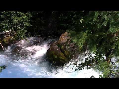 Roaring River-McKenzie Hwy,Oregon