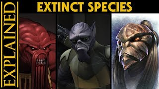 The Extinct Species of the Star Wars Galaxy