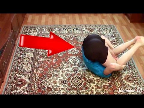 Что делать болит спина позвоночник