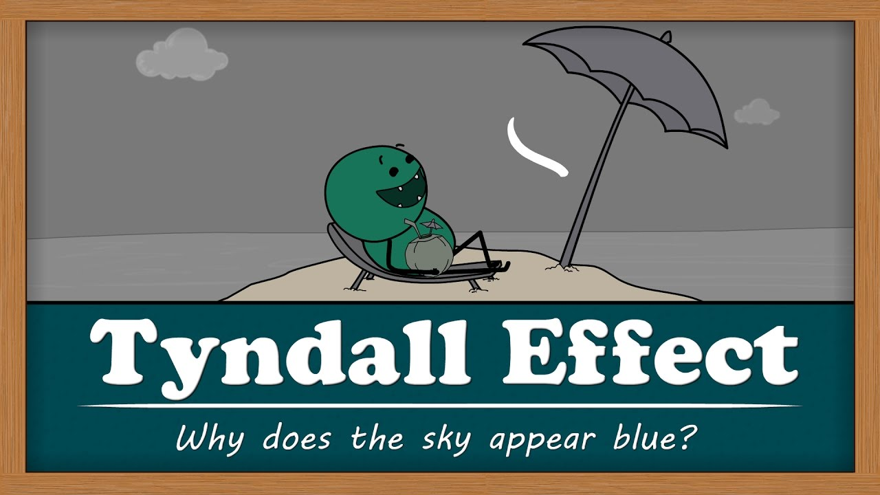 Tyndall Effect - Why does the sky appear blue? | #aumsum #kids #science #education #children