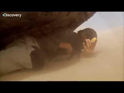 Как спастись от песчаной бури