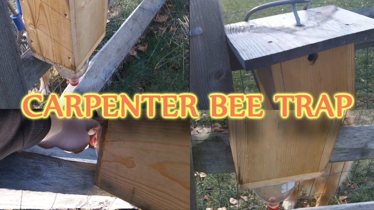 Homemade Carpenter Bee Trap