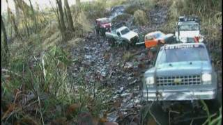 scale crawl and mudding or why all the big leaves