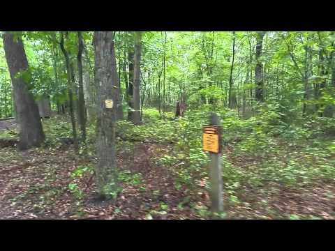 26 Acres on Wayne National Forest with Small Cabin