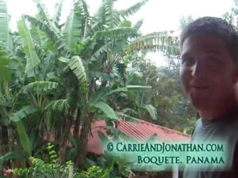 Boquete, Panama Vacation Rental: Awesome Casitas in ...
