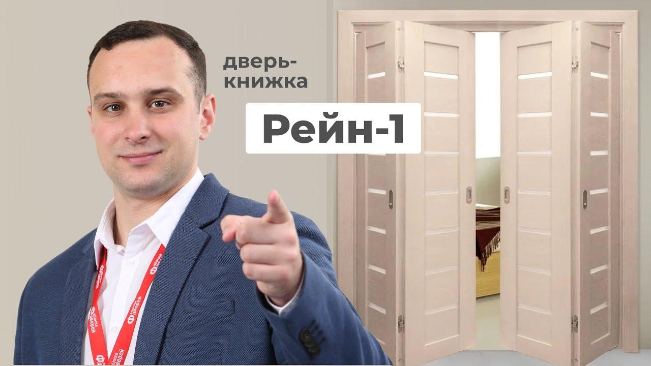 Дверь-книжка Рейн-1