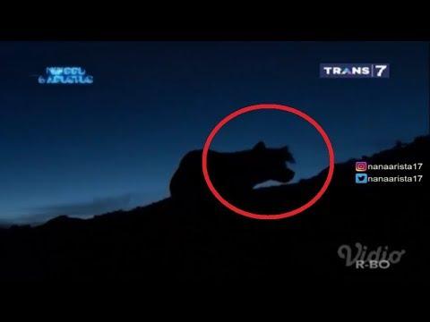 BIKIN MERINDING! 7 Spot Gunung Angker Di Indonesia On The Spot Trans 7 Terbaru 3 Agustus 2017