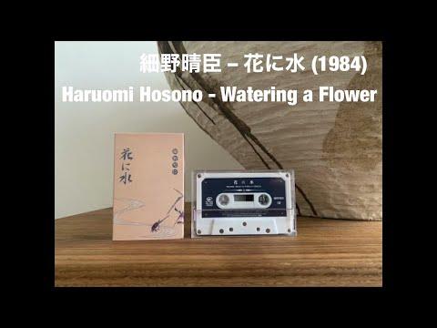 Haruomi Hosono - Watering a Flower  / 細野晴臣 –花に水 (1984)
