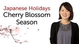Learn Japanese Holidays - Cherry Blossom Viewing Season - 日本の祝日を学ぼう - 花見