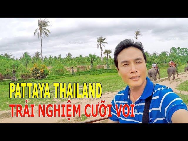 PATTAYA THAILAND TRẢI NGHIỆM CƯỠI VOI