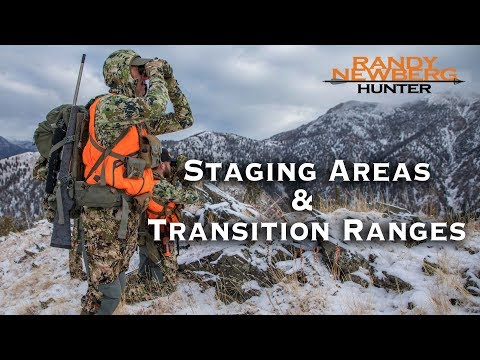 How To Hunt Post-rut  Elk In Staging Areas & Transition Ranges