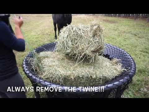 Hay Chix Net + Hay Basket