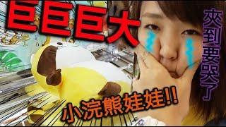 老婆夾哭了?日本夾娃娃之巨大小浣熊好難夾~【火曜夾娃娃】#114 thumbnail