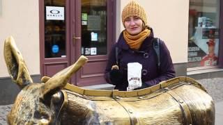 Co warto zobaczyć w Toruniu? Pomysł na gotycki weekend