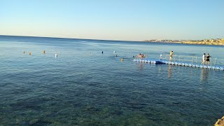 Прогулка по отелю Siva Sharm в Шарм Эль шейх Египет Косяки пляжа или наш менталитет