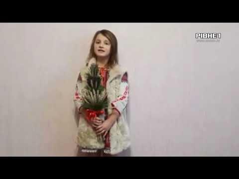 TVRivne1 / Рівне 1: Відео 3