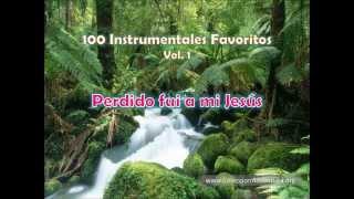 100 Instrumentales Favoritos vol  1 - 085 Perdido fui a mi Jesus