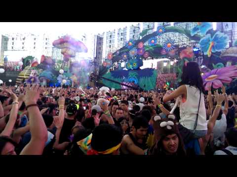 Dash Berlin Live Countdown for Finale of EDC 2013