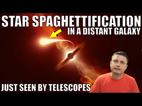 Black Hole Spaghettified a Star and We Saw Its Last Moments