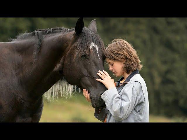 Windstorm 4 - Menedék 4. (Ostwind: Aris Ankunft), német családi film, 101 perc