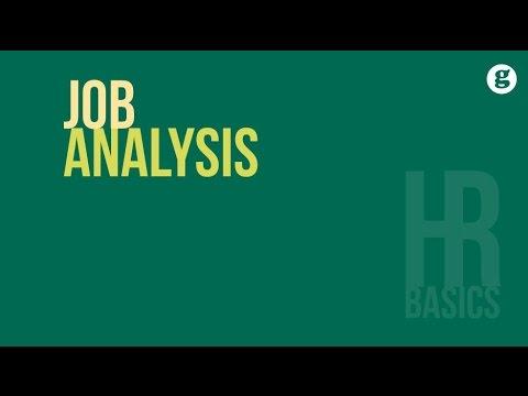 HR Basics: Job