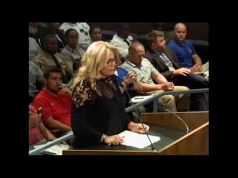 10-17-17 St. Louis County Council Meeting
