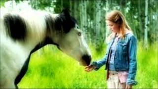 Video My Top 10 Favorite Horse Movies! download MP3, 3GP, MP4, WEBM, AVI, FLV September 2018