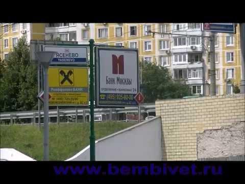 Как дойти до ветклиники Бемби расположенной рядом с метро Ясенево