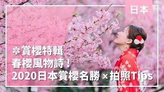 ❀賞櫻特輯❀春櫻風物詩!2020日本賞櫻名勝u0026拍照TIPS│日本│春天│櫻花