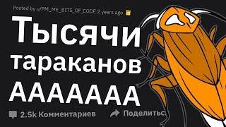 ХУДШИЙ Кошмар Уничтожителей Насекомых. ЖУТКИЕ Истории Дезинсекторов