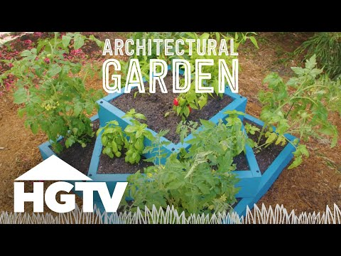 DIY Architectural Garden - Way to Grow - HGTV