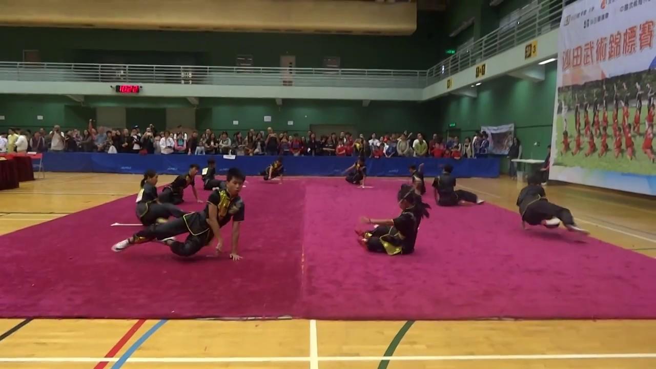 沙田武術錦標賽 2017 - 集體九節鞭 (中國武術海外訓練學院-精英班) - YouTube