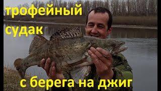 ДВА ДНЯ ШИКАРНОЙ РЫБАЛКИ на СУДАКА И ЩУКУ в Астраханской области Рыбалка с берега на спиннинг Джиг