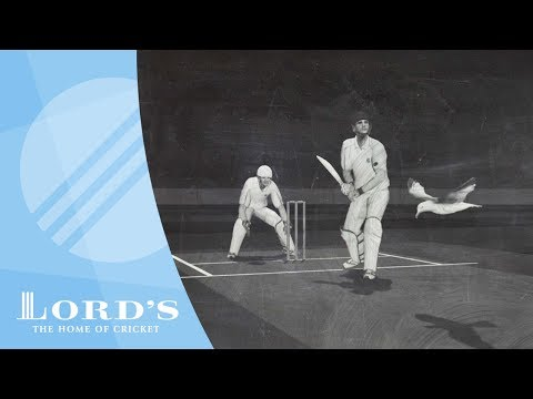 Dead Ball | The Laws of Cricket Explained with Stephen Fry