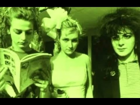 The Slits - Shoplifting (John Peel Session 1977)