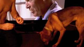 Dog Learns Asl