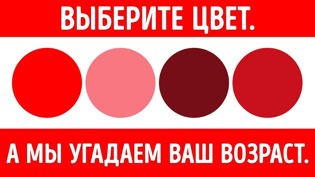 Цветовой Тест, Который Определит Ваш Ментальный Возраст ...