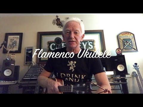 Flamenco Ukulele Lesson by Jeebs McSnooty