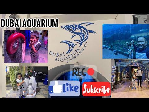 Dubai Aquarium & Underwater Zoo| World's Largest Aquarium| Dubai Tourist Attraction