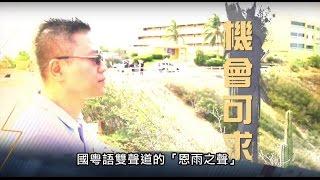 電視節目 TV 1368 機會可求 (HD粵語) (委內瑞拉系列)