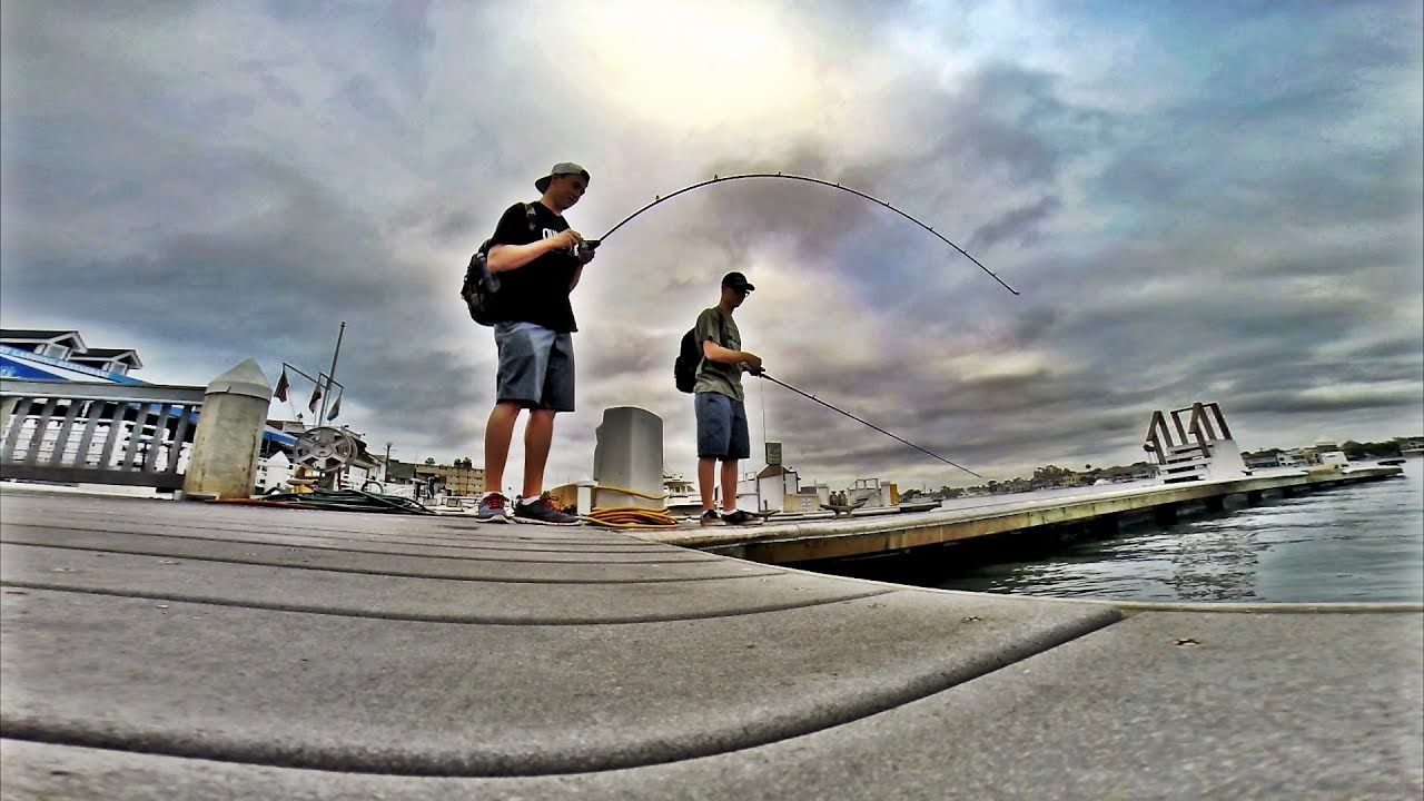 Newport harbor spotted bay bass fishing youtube for Newport harbor fishing