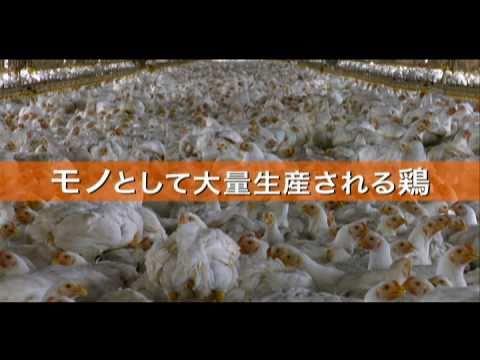 映画『フード・インク』『ありあまるごちそう』予告編