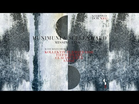 munimuni & Seelenwald - Missing Link (Original Mix)
