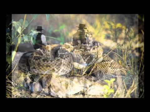 David R. Stoecklein slideshow - Buckaroo Man