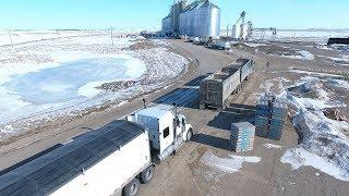 Hauling Grain - Jason LeBlanc Farm