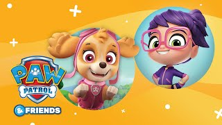 PAW Patrol & Abby Hatcher | Compilation #24 | PAW Patrol Official & Friends